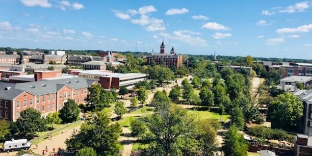 Blick auf Auburn. Foto: ©John Wilson