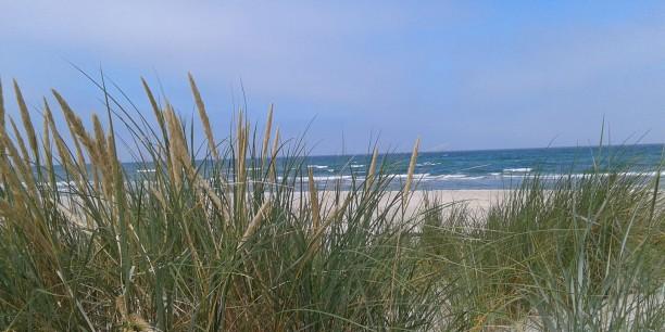 Der Ostseestrand auf der Halbinsel Mönchgut, auf der Akademiedirektor Dr. Sebastian Kranich im August als Kurpastor weilt. Foto: © Sebastian Kranich