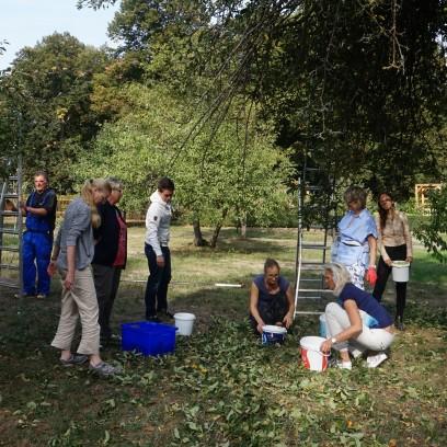 Apfelernte im Garten des Zinzendorfhauses. Foto: ©Tina Schweizer/EAT
